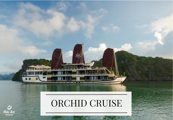 ORCHID-CRUISE